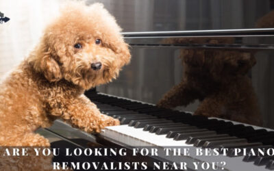 Are You Looking For The Best Piano Removalists Near You?