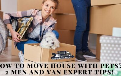 How to Move House with Pets? 2 Men and Van Expert Tips!